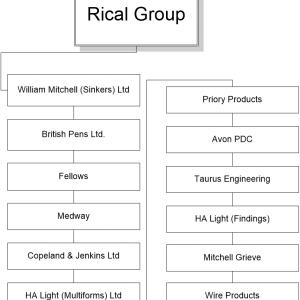 Rical Group Company History